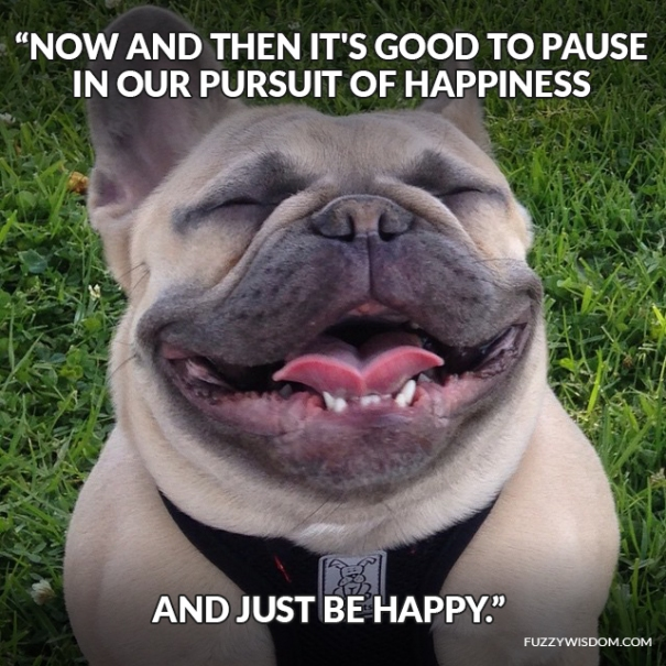 Now and then it's good to pause in our pursuit of happiness and just be happy. - Guillaume Apollinaire, FuzzyWisdom.com